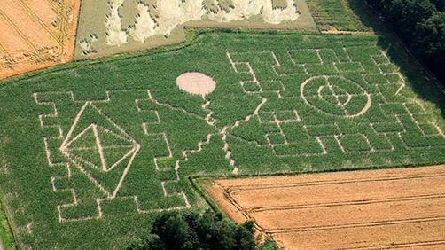 Maislabyrinth Regensburg