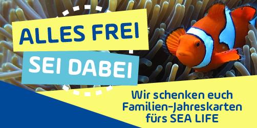 """""""Alles frei, sei dabei"""": Wir schenken euch Familien-Jahreskarten fürs SEA LIFE"""