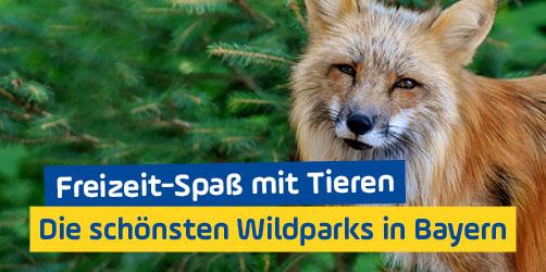 Freizeit-Spaß mit Tieren: Die schönsten Wildparks in Bayern