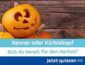 QUIZ: Kenner oder Kürbiskopf - Bist du bereit für den Herbst?