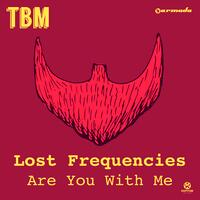 Lost Frequencies