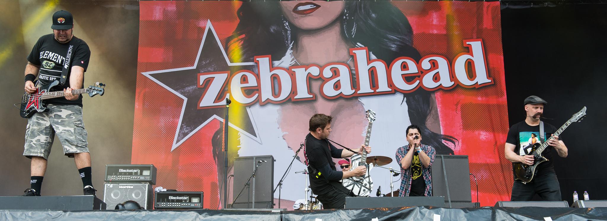 """Neueinsteiger: Zebrahead - """"All My Friends Are Nobodies"""""""