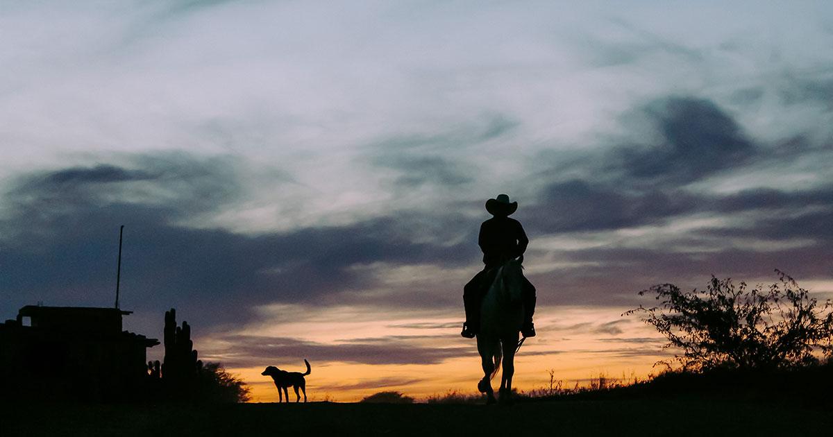 Die 10 besten Rock-Songs... für Cowboys