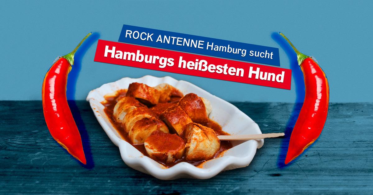Mitmachen & Porsche fahren: Wir suchen Hamburgs heißesten Hund!