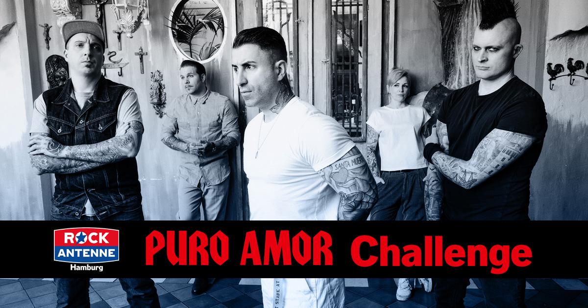 Hamburgs größter Broilers-Fan - macht mit bei der PURO AMOR Challenge!