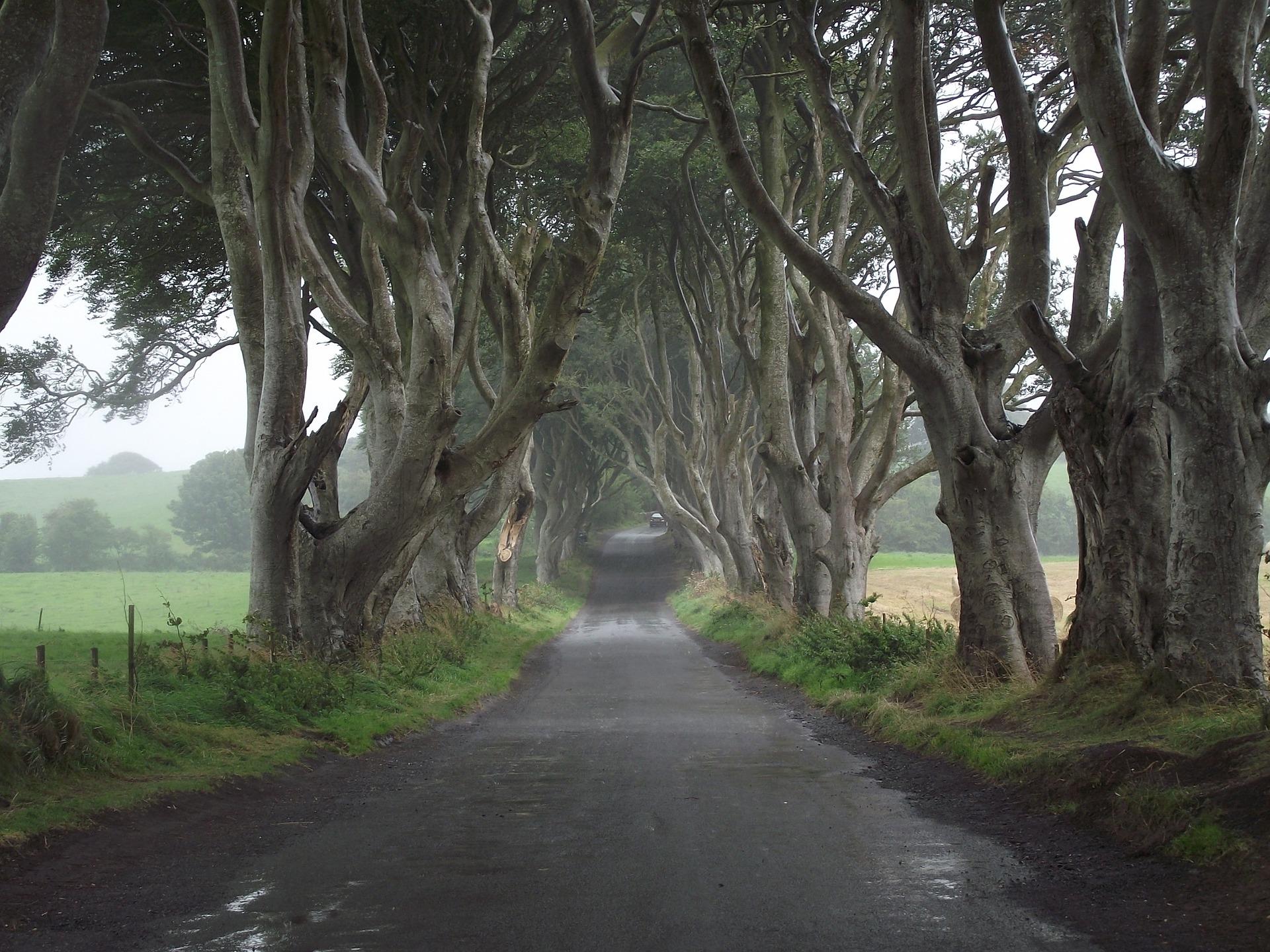 Game of Thrones: 15 Fakten zum Kult-Serienepos