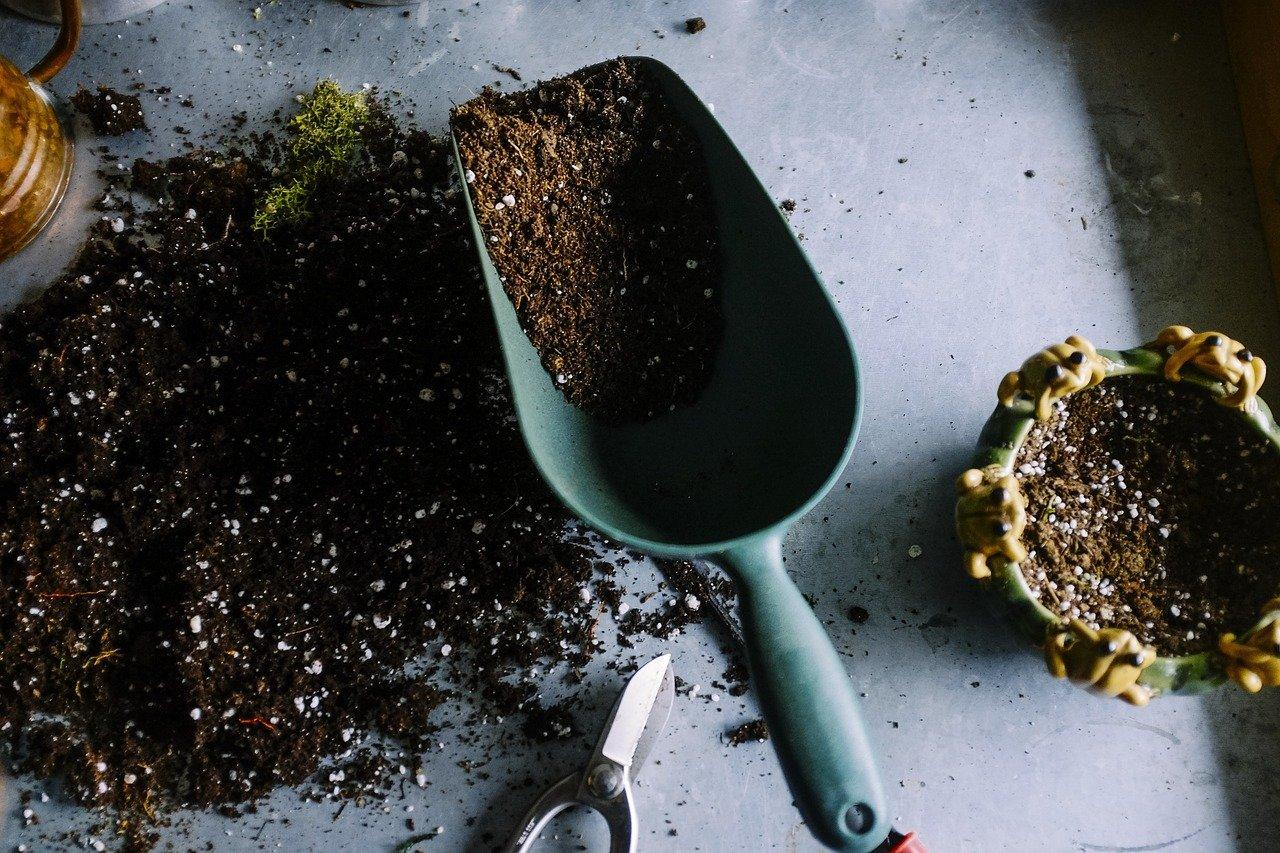 Den Garten für das Frühjahr herrichten: So lässt sich der Garten in eine Wohlfühloase verwandeln