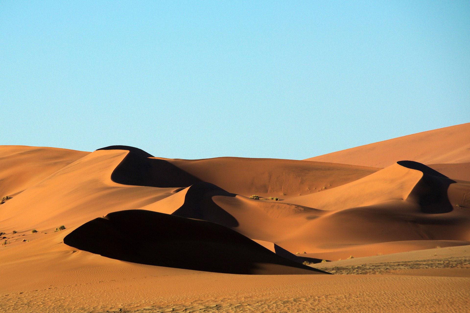 """Toto: """"Africa"""" ist für immer in der Namib-Wüste zu hören"""