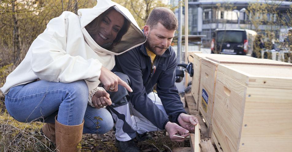 ANTENNE BAYERN setzt sich für nachhaltigen Schutz von Bienen in Bayern ein