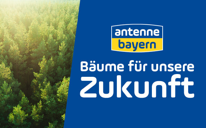 ANTENNE BAYERN pflanzt Bäume für unsere Zukunft