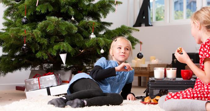 Wer Hat Den Tannenbaum Erfunden.Weihnachtsbaum Unnützes Wissen Zum Angeben Beim Weihnachtsessen