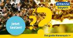 Das große Bienenquiz - teste hier dein Wissen