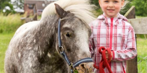 Urlaub für Pferdebegeisterte