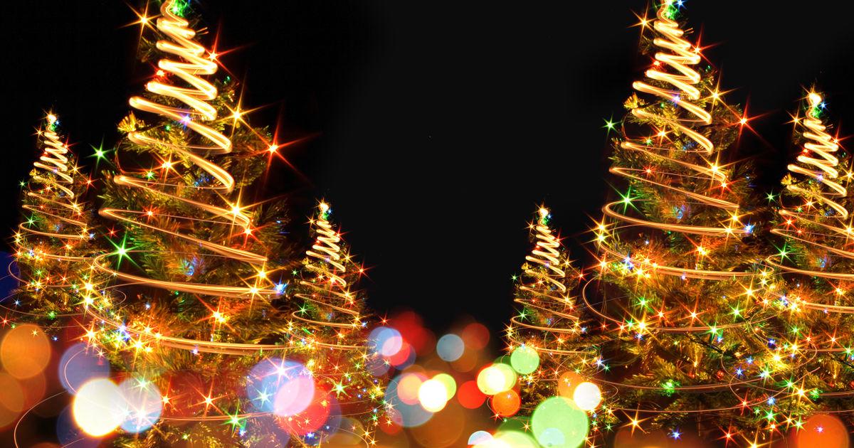o tannenbaum haltbarkeit sorten transport alle infos rund um den weihnachtsbaum antenne. Black Bedroom Furniture Sets. Home Design Ideas