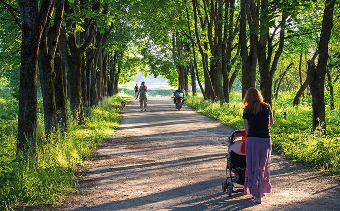Wanderungen mit Kinderwagen: Das sind die schönsten Touren in Bayern