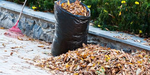 Rechtsfragen im Herbst: Warum nasses Laub teuer werden kann