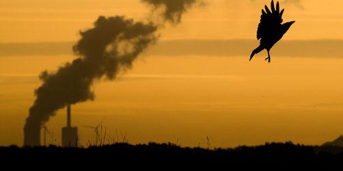 Klimaschutz-Paket der GroKo steht: Das wird teurer, das wird günstiger für euch!