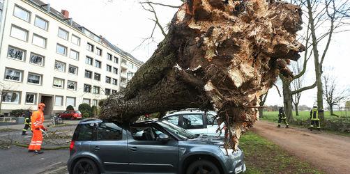 Sturmschaden – Was tun? Wer zahlt?