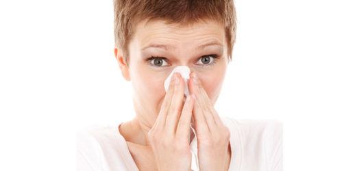 So erkennt und behandelt ihr eine Pollenallergie richtig