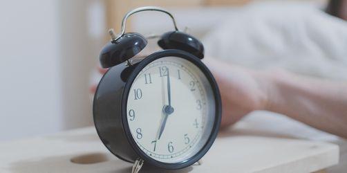 Der frühe Vogel hat mehr vom Leben - Frühaufsteher leben länger