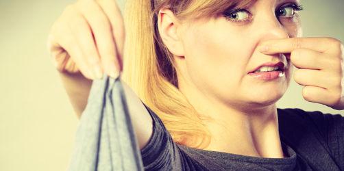 Das große Haushalts-Quiz: Wechselt ihr Spülschwamm und Co. oft genug?