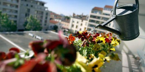 Was darf ich auf meinem Balkon?