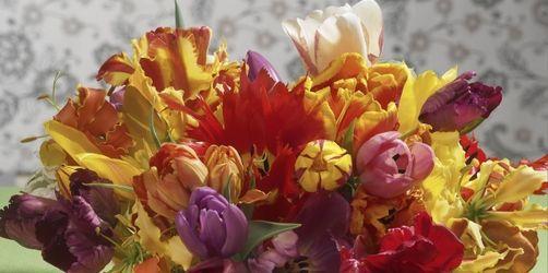 Damit Sie länger etwas davon haben: Zehn Tricks, damit Frühlingssträuße länger blühen