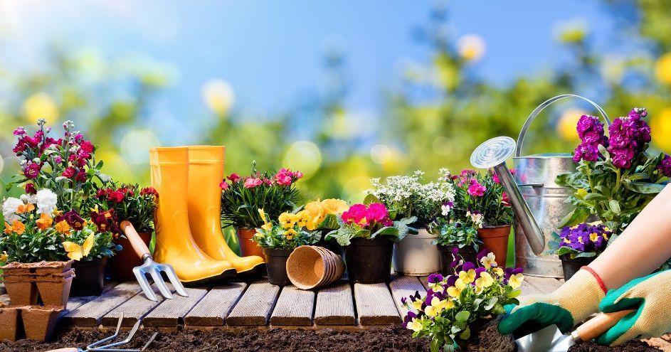 blumen b ume beete so macht ihr balkon und garten fit. Black Bedroom Furniture Sets. Home Design Ideas