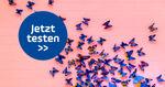 Schmetterlings-Quiz: Klickt euch durch spannendes Wissen & kuriose Fakten