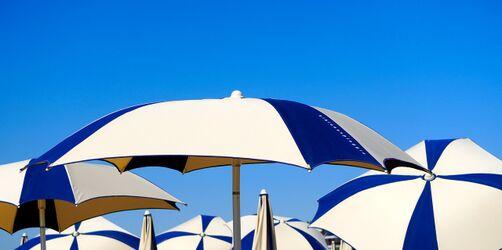 Schattenspender - geschützt durch den Sommer