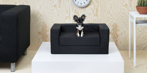 Tierisch gut: IKEA bringt Haustiermöbel auf den Markt