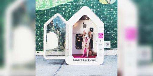 Der Dogparker - ein Hundeparkplatz für unterwegs