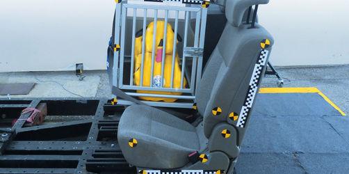 Hundeboxen fürs Auto: So ist euer Vierbeiner wirklich sicher