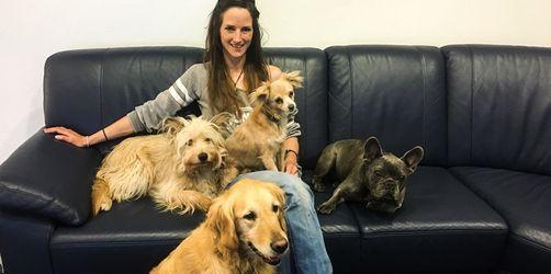 Nach tödlichen Hundeattacken - alle Antworten der Hundeexpertin