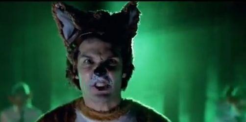 Wie macht der Fuchs? - Verrücktes Video wird YouTube-Hit