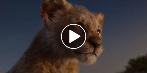 """Mit Timon und Pumbaa! Das ist der neue """"König der Löwen""""-Trailer"""