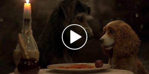 """Disneys """"Susi und Strolch"""": Schaut euch hier den ersten Trailer an!"""
