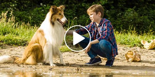 """""""Lassie - eine abenteuerliche Reise"""" im Kino - ein sehr bayerischer Film"""