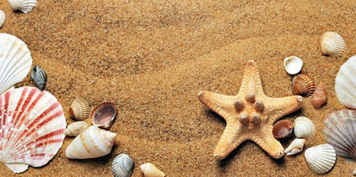 Welche Souvenirs dürft ihr aus dem Urlaub mitbringen?