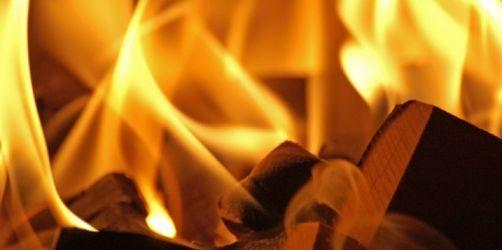 Vorsicht vor feuchtem Holz: Gefahr für Gesundheit und Umwelt