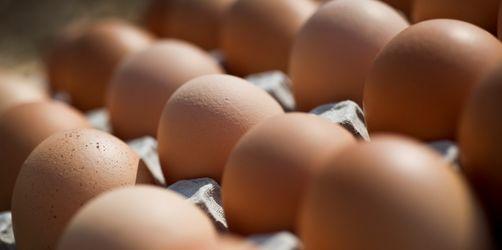 Salmonellen in Bio-Eiern bei Aldi und Co.! Rückruf in 7 Supermarkt-Ketten