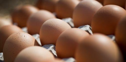 Salmonellengefahr: 5 Supermärkte rufen bundesweit Bio-Eier zurück
