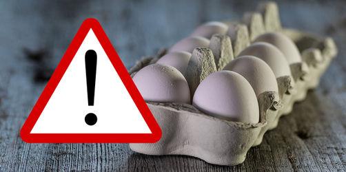 Rückruf: Diese Eier sind von Fipronil betroffen!