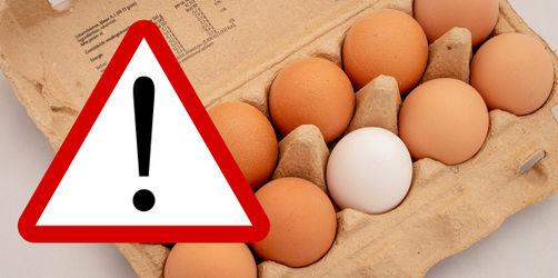 Rückruf: 73.000 Fipronil-Eier sind erneut im Supermarkt gelandet!