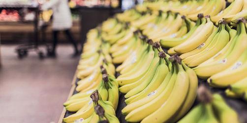Krummer Kummer: Gibt es bei uns bald keine Bananen mehr?