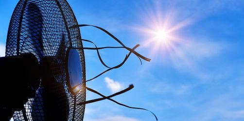Ventilatoren im Test: Diese Modelle lohnen sich und diese nicht