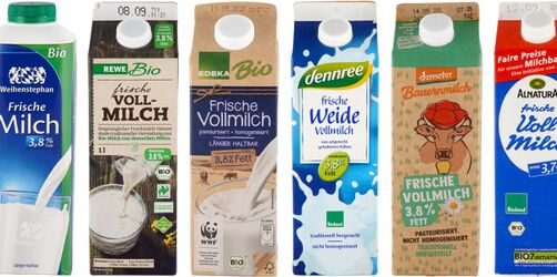 Bio-Milch im Test: Ist sie wirklich die bessere Wahl?