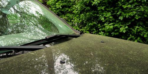 Waschen oder Warten? Das gilt bei Pollen am Auto