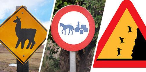 Quiz: Welche dieser verrückten Verkehrsschilder gibt es wirklich?