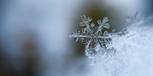 Winter im Anmarsch: Hier könnt ihr ab Montag mit Schnee rechnen